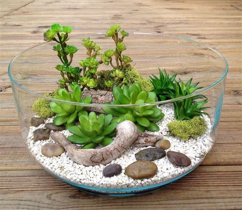 mini plante grasse les 25 meilleures id 233 es de la cat 233 gorie plantes grasses artificielles sur salle 224