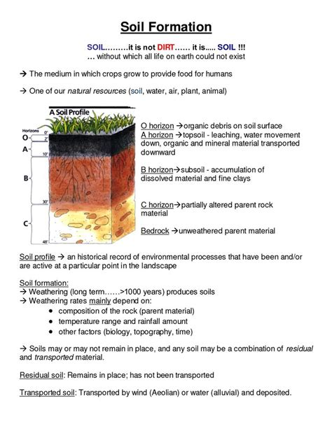 soil profile worksheet projects   soil layers