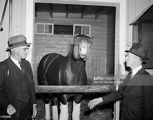 17 Best images about The Great Racers on Pinterest | Horse ...