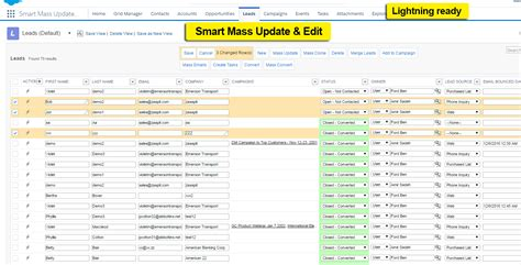 Smart Mass Update™  Data Management For Pros In