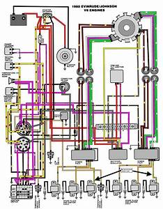 31 Johnson Tilt And Trim Wiring Diagram