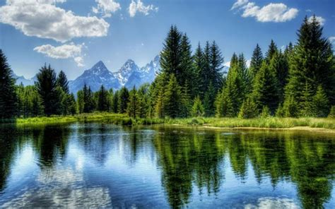 Hd Evergreen Forest Lake Hdr Wallpaper  Download Free 52364