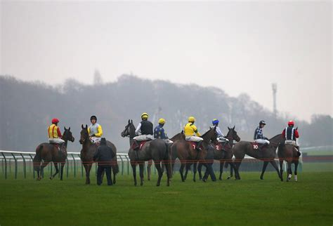 action newcastle racing horse lingfield haydock ascot bull tom tips today wstale todays