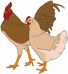 File:Rooster and hen clipart 01.svg - Wikipedia