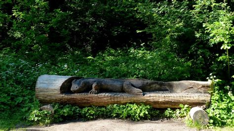 le bureau heron parc panoramio photo of villeneuve d 39 ascq parc du hé