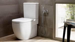 Do, You, Need, To, Renovate, A, Bathroom, For, The, Elderly, U2502roca, Life