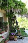 Best 25+ Small gardens ideas on Pinterest   Small garden small garden ideas pinterest