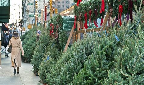 christmas tree brooklyn free delivery in nyc manhattan