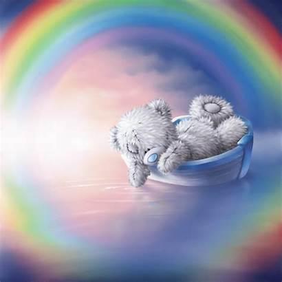 Teddy Tatty Rainbow Bears Bear Lake Shane