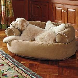 pinterest o the worlds catalog of ideas With big comfy dog beds