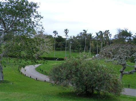 bermuda botanical gardens botanical gardens bermuda picture of bermuda botanical