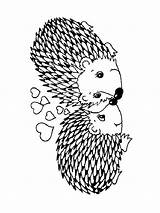Hedgehog Coloring Animals Printable Templates Template sketch template