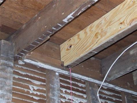 sistering floor joists with plywood reinforce 2x8 floor to hold tile tub