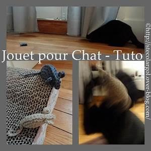 Jouets Pour Chats D Appartement : jouets pour chats a faire soi meme ~ Melissatoandfro.com Idées de Décoration