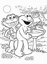 Coloring Zoe Pages Sesame Street sketch template