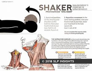 Handout  Shaker Swallow Exercise  U2013 Therapy Insights
