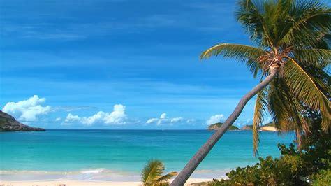 zoom beach video background iii high quality virtual