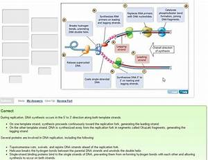 Verify Is A Photo Showing A Covid Wiring Diagram