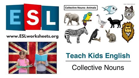 Collective Nouns Esl Worksheet (teach Kids English) Youtube