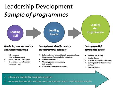 leadership development models leadership innovation
