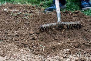 Rasen Vertikutieren Wann : wann rasen s en das ist der richtige zeitpunkt 11880 ~ Eleganceandgraceweddings.com Haus und Dekorationen