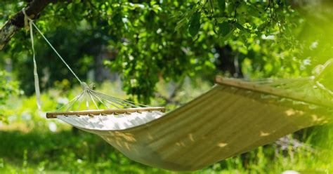 Hanging A Hammock From Trees by How To Hang A Hammock Without Trees Local