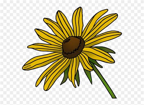 library  black eyed susan png  black  white png files clipart art