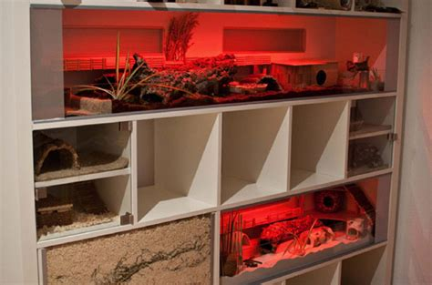 ikea expedit  story hamster habitat ikea hackers