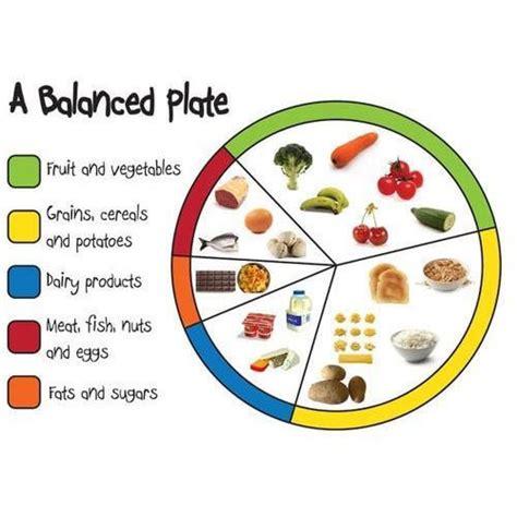 healthy food printed poster global