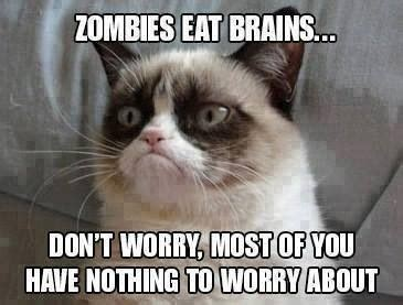 Grumpy Cat, Zombies And Cats On Pinterest