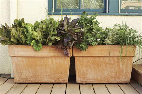 Edible Container Garden Ideas Gardening Mother Earth