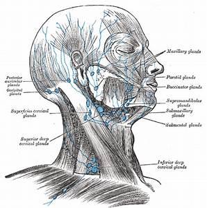 Pijn achter oor en kaak