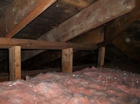 moisissure plafond salle de bain obasinc