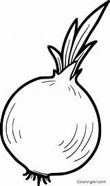 Onion Coloring Cebula Warzywa Frutas Owoce Vegetable Vector Drawing Colorear Kolorowanka Verduras Cebolla Vegetables Fruits Printable Easy Libro Disegni Paper sketch template