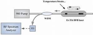The Diagram Of The Dual Polarization Dbr Fiber Laser Based
