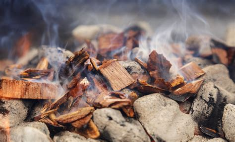 Best Wood Chips For Smoking For The Money  Dadgum Barbecue