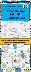Fetal Pig Dissection Laboratory  Instructional Guide