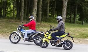 Suzuki Vanvan 125 : the coolest kids in the class honda msx125 vs suzuki vanvan ~ Medecine-chirurgie-esthetiques.com Avis de Voitures
