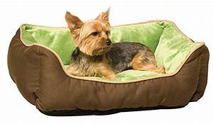 the best top 14 stylish dog beds for small dogs With cool dog beds for small dogs