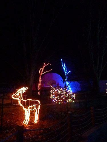 Toledo Zoo Lights Before Christmas
