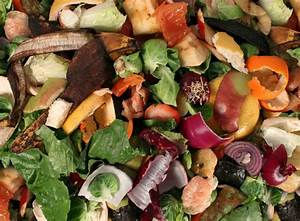 NYC Mayor to Introduce Food Composting Program | Recycling ...