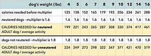 Calorie Chart For Dogs Morkie Dog Weight Morkie Dogs