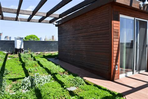 eco green roof brooklyn eco triplex with natural swimming pool and green roof renting for 1 400 night 6sqft