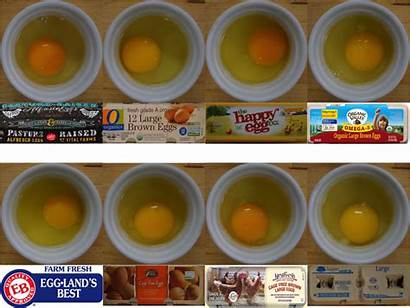 Eggs Egg Grocery Organic Raised Pasture Vital