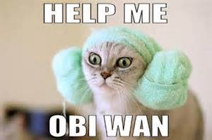 wars cats some wars memes for phantom menace day 27 photos
