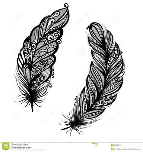 Abstract Feather Bird Stock Vector Image Design