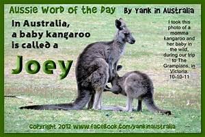 167 best Aussie... Australian Mom Quotes