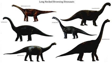 Toys And Dinosaurs On Pinterest