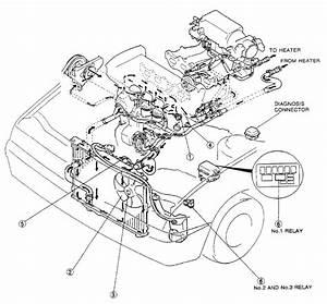 Bp Throttle Body Hose Diagram Needed