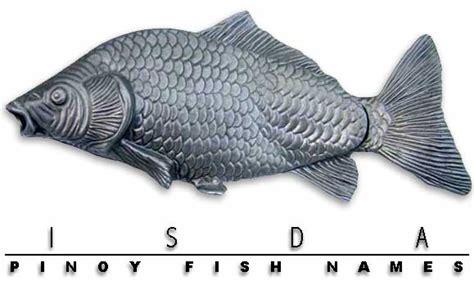 philippine fish names  english  tagalog isdang